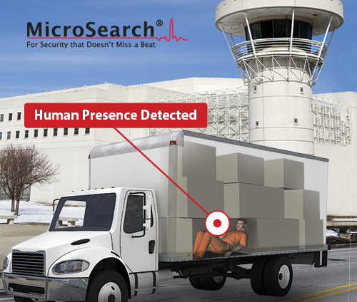 MicroSearch-2